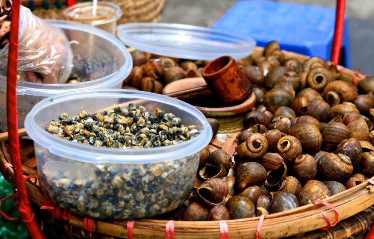 Egzotyczne Smaki Kuchnia Wietnamska